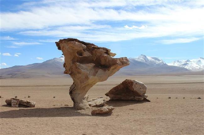 De stenen boom