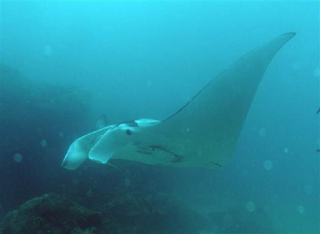 under water world!!