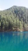 Zo mooi blauw.....