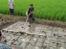 Jur zijn eigen rijstveld in Cianjur ;)