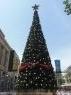 Grote kerstboom in Perth begin november