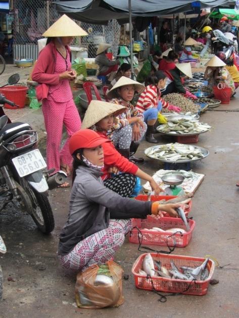 Markt Duong Dong